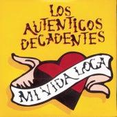 Mi Vida Loca by Los Autenticos Decadentes