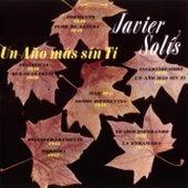 Un Año Mas Sin Ti by Javier Solis