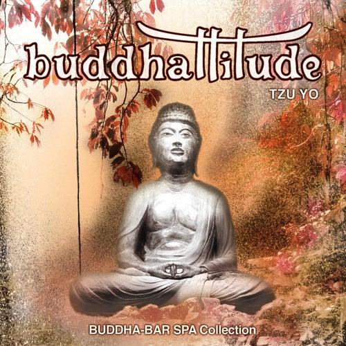 Buddhattitude Tzu Yo by Riccardo Eberspacher