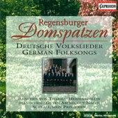 Choral Concert: Regensburg Cathedral Choir - Jeep, J. / Brahms, J. / Silcher, F. / Zuccalmaglio, A.W.F. Von / Werner, H. (German Folk Songs) by Roland Buchner