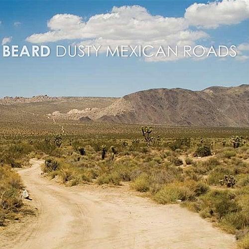 Dusty Mexican Roads by The Beard