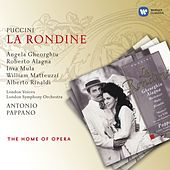 Puccini: La Rondine by Various Artists