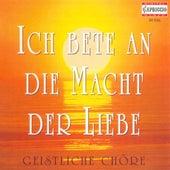 Choral Concert - Bortniansky, D. / Bach, J.S. / Mozart, W.A. / Silcher, F. / Mendelssohn, Felix / Bruckner, A. / Schubert, F. by Various Artists