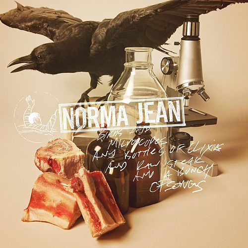 Birds And Microscopes And Bottles Of Elixirs And Raw Steak And A Bunch Of Songs by Norma Jean