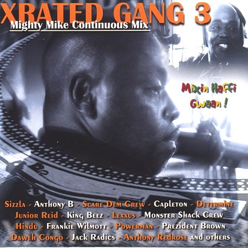 Xrated gang 3 (mighty mike continuous mix) by Various Artists