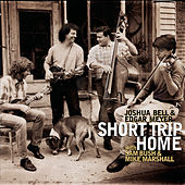 Short Trip Home by Various Artists