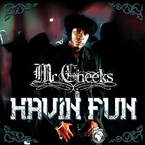 Havin Fun - Single by Mr. Cheeks