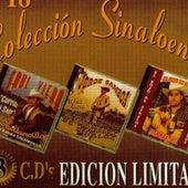 Saul Viera, Jorge Gamboa, Y El Rojo De Sinaloa Coleccion Sinaloense by Various Artists