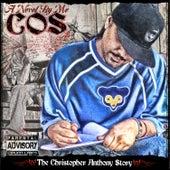 A Novel by Me by C.O.S.
