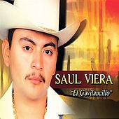 El Gavilancillo, Vol. 5 by Saul Viera
