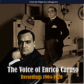 The Voice of Enrico Caruso, Recordings 1904-1920 by Enrico Caruso