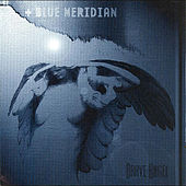 Brave Angel by Blue Meridian