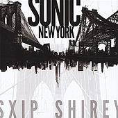 Sonic New York by Sxip Shirey