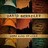 Some Kind of Cure by David Berkeley
