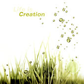 Life is…Creation by Various Artists