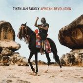 African Revolution by Tiken Jah Fakoly