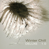 Winter Chill Deluxe 1.0 by Various Artists