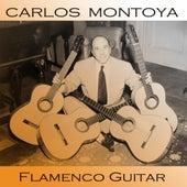 Flamenco Guitar by Carlos Montoya