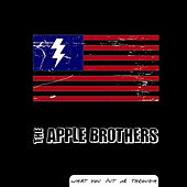 What You Put Me Through - Single by The Apple Bros.