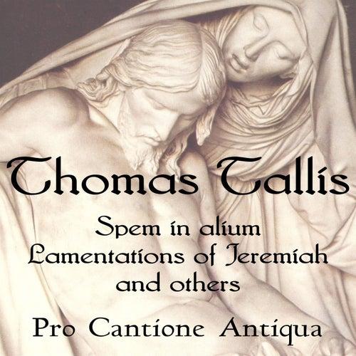 Thomas Tallis: Spem in Alium, Lamentations, & more by Pro Cantione Antiqua