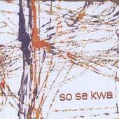 So Se Kwa (Clube Da Esquina Tributo) by Kevin Pike