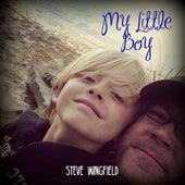 My Little Boy by Steve Wingfield
