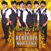 Porque Te Amo by Rebeldia Norteña