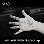 All You Need is Love - EP by The Seed
