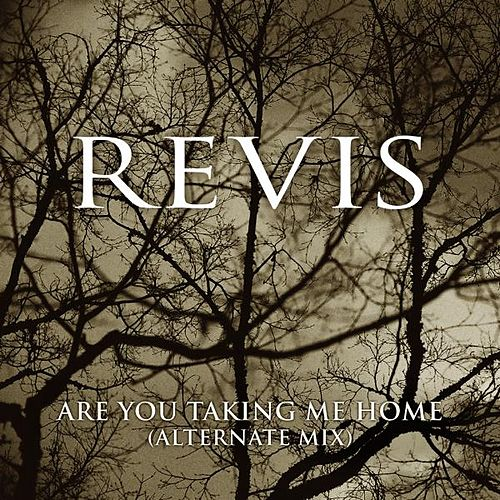 Are You Taking Me Home (Alternate Mix) - Single by Revis