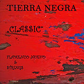 Classic - Flamenco Nuevo & Strings by Tierra Negra