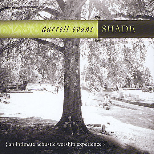 Shade by Darrell Evans