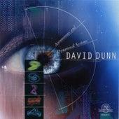 David Dunn: Autonomous and Dynamical Systems by David Dunn