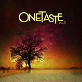 One Taste Collective Vol. 3 by Various Artists