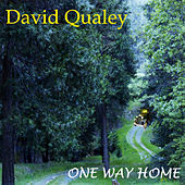 One Way Home by David Qualey