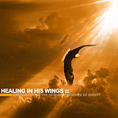 Healing In His Wings by Matt Sorger