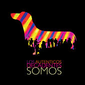 Somos by Los Autenticos Decadentes
