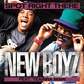 Spot Right There by New Boyz