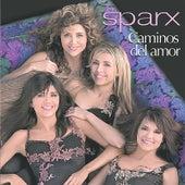 Caminos Del Amor by Sparx