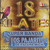 18 Kilates by Los Pajaritos De Tacupa