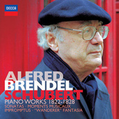 Schubert: Piano Works 1822-1828 by Alfred Brendel
