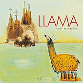 Close To The Silence by Llama