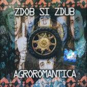 Agroromantica by Zdob Si Zdub