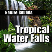 Tropical Water Falls by Nature Sounds BLOCKED