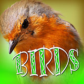 Birds by Sound Effects