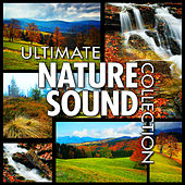 Ultimate Nature Sounds for Healing, Yoga & Spa by Nature Sounds BLOCKED