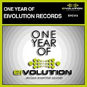 One Year of Eivolution Records by Various Artists