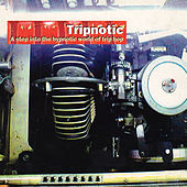 Tripnotic by Various Artists