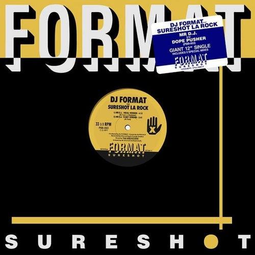 Mr Dj by DJ Format