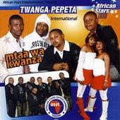 Mtaa wa Kwanza by Twanga Pepeta International