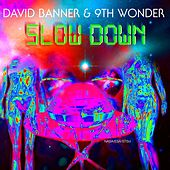 Slow Down by David Banner